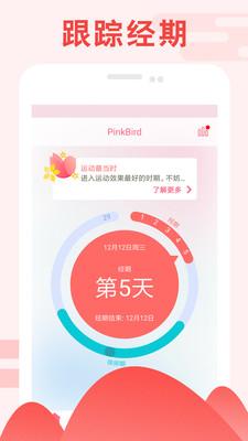 PinkBird界面截图预览