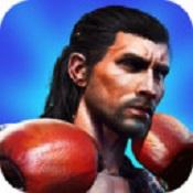 重拳出击游戏免费下载-重拳出击手机版下载V1.1.1