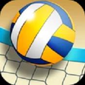 沙滩排球世界冠军安卓版下载-沙滩排球世界冠军手游下载V1.01