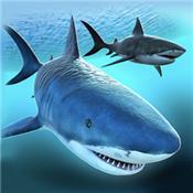 鲨鱼饿了游戏下载-鲨鱼饿了手游下载V1.0