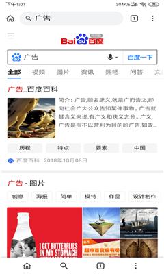 Kiwi浏览器界面截图预览