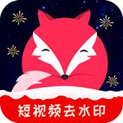 飞狐视频下载器 V3.1.0