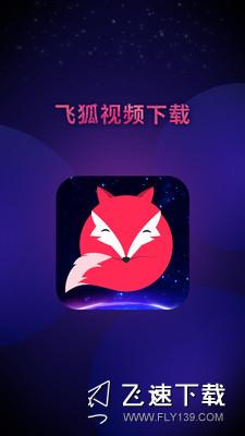 飞狐视频下载器界面截图预览