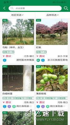 中州花木网界面截图预览