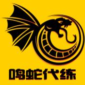 鸣蛇代练 V2.0.4