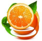 橙子视频下载app-橙子视频 安卓版v2.1.8